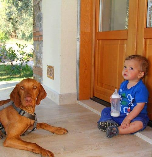 Urlaub mit Hund in der Toskana.