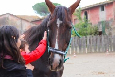 Reiturlaub im Agriturismo Paganico