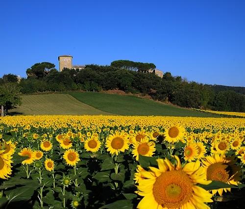 Burg Castiglione, Nähe Perugia