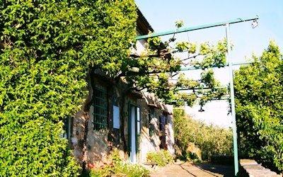 Landhaus Buti 2
