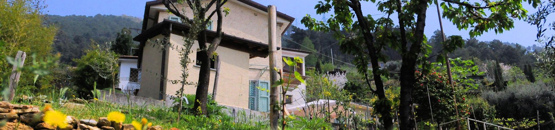 Toscana Forum, die Toskana Spezialisten