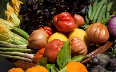 Agriturismo Crespina Eigenproduktion 11