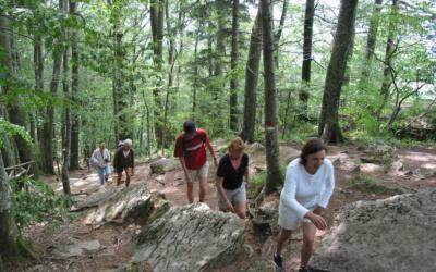 Bio Agriturismo Caprese 1 Bergwanderung