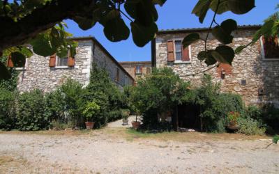 Bio Bauernhof Asciano 1 (15)