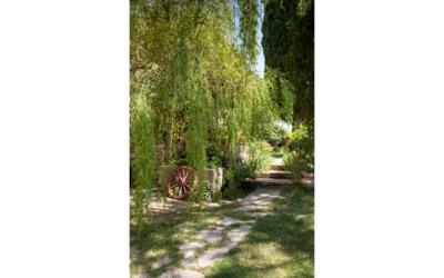 Bio Bauernhof Asciano 1 (6)