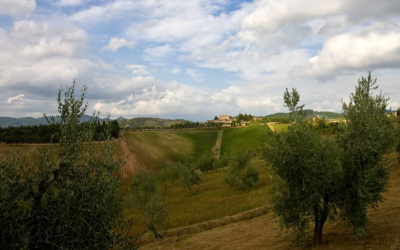 Burg Chianti 3 Panorama 01