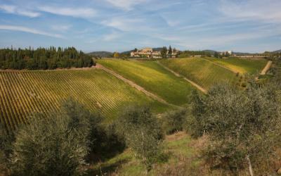 Burg Chianti 3 Panorama 03