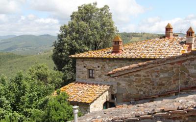 Burg Chianti 4 Außenansichten 09