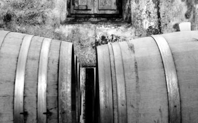 Burg Chianti 4 Impressionen 04