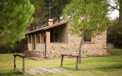 Cottage La Sassa 1 Außenansichten 07