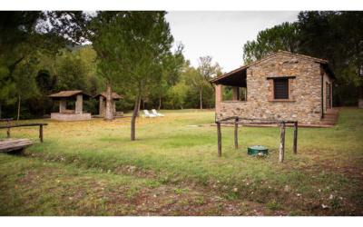 Cottage La Sassa 1 Außenansichten 08