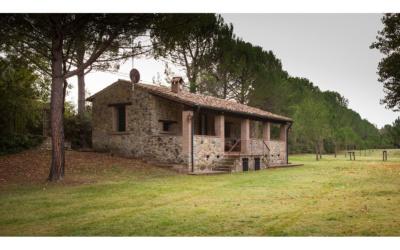 Cottage La Sassa 1 Außenansichten 10