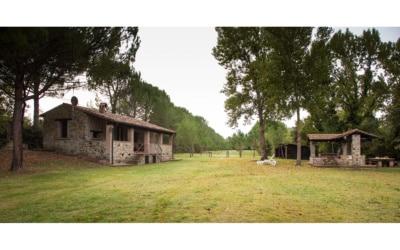 Cottage La Sassa 1 Außenansichten 11