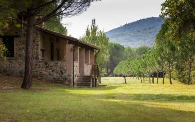 Cottage La Sassa 1 Außenansichten 16