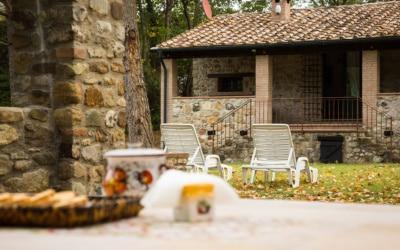 Cottage La Sassa 1 Impressionen 09