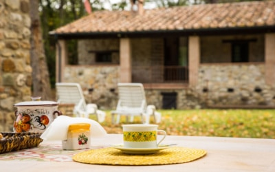 Cottage La Sassa 1 Impressionen 12