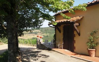 Ferienhaus Chianti 2 Außenansichten 08
