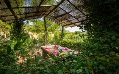 Ferienhaus Guardistallo 3 Außenansichten 08