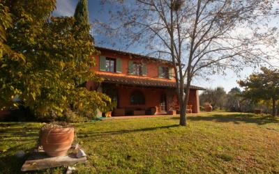 Ferienhaus Peccioli 1 Außenansichten 15