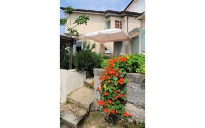 Ferienhaus Pietrasanta 1 Außenansichten 01