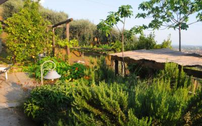 Ferienhaus Pietrasanta 1 Panorama 05