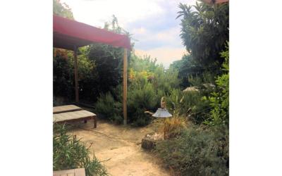 Ferienhaus Pietrasanta 1 Terrasse 04