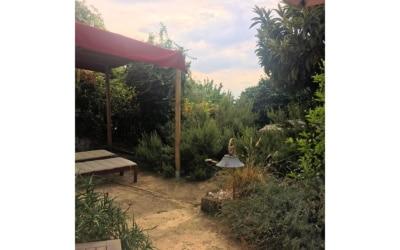 Ferienhaus Pietrasanta 1 Terrasse 07