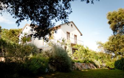 Ferienhaus Sassetta Außenansichten 02