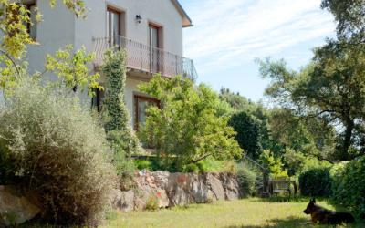 Ferienhaus Sassetta Außenansichten 04
