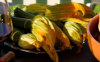 Ferienhaus Toskana 2 Genußmomente 04