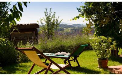 Ferienhaus Toskana 2 Wohnung Melo Garten 03