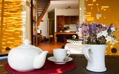 Ferienhaus Toskana 2 Wohnung Melo Terrasse 12