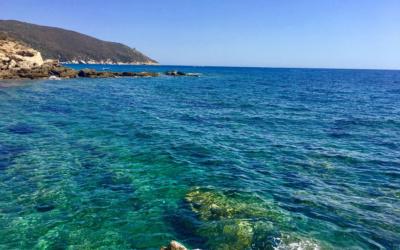 Ferienwohnung Marsiliana 1 Impressionen 03