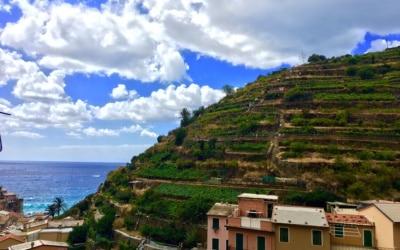 Ferienwohnung Marsiliana 1 Impressionen 10