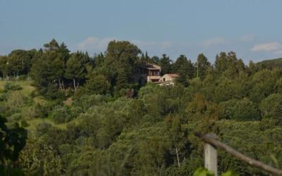Ferienwohnungen Rosignano 1 (1)