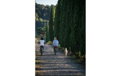 Landgut Terricciola Hunde willkommen (1)