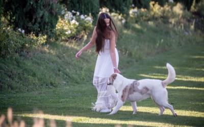 Landgut Terricciola Hunde willkommen (2)