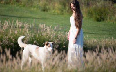 Landgut Terricciola Hunde willkommen (3)