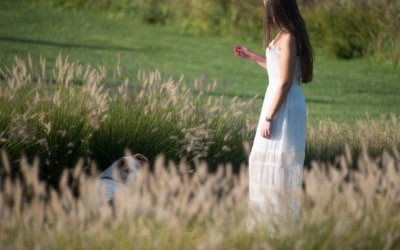 Landgut Terricciola Hunde willkommen (4)