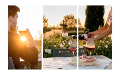 Landgut Terricciola Weinprobe 1