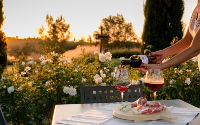 Landgut Terricciola Weinprobe (2)