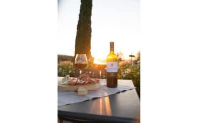 Landgut Terricciola Weinprobe (3)