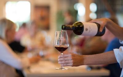 Landgut Terricciola Weinprobe (4)