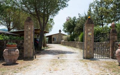 Landhaus Chianni 4 Außenansichten 17