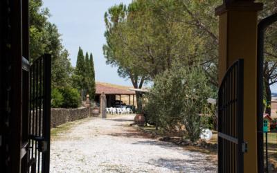 Landhaus Chianni 4 Außenansichten 30