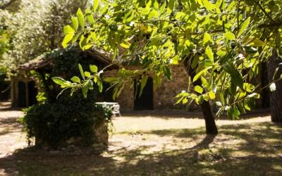 Landvilla Guardistallo Außenansichten 13