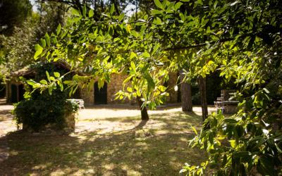 Landvilla Guardistallo Außenansichten 17