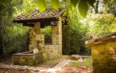 Landvilla Guardistallo Außenansichten 22