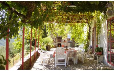 Villa Buti 3 Terrasse 01