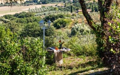 Villa Chianni 9 Impressionen 13